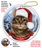 Tabby Brown Cat Howliday Cat Christmas Ornament