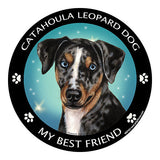 Catahoula Leopard Dog My Best Friend Dog Breed Magnet
