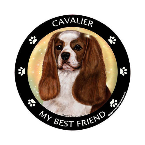Cavalier King Charles Spaniel Dog My Best Friend Dog Breed Magnet