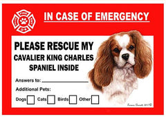 Cavalier King Charles Spaniel Dog Emergency Window Cling