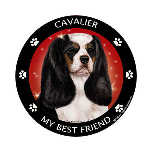 Cavalier King Charles Spaniel Tri Color My Best Friend Dog Breed Magnet