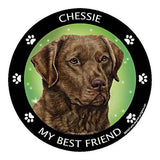 Chesapeake Bay Retriever Chessie My Best Friend Dog Breed Magnet
