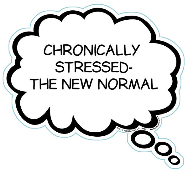 Chronically Stressed - The New Normal Brain Fart Car Magnet
