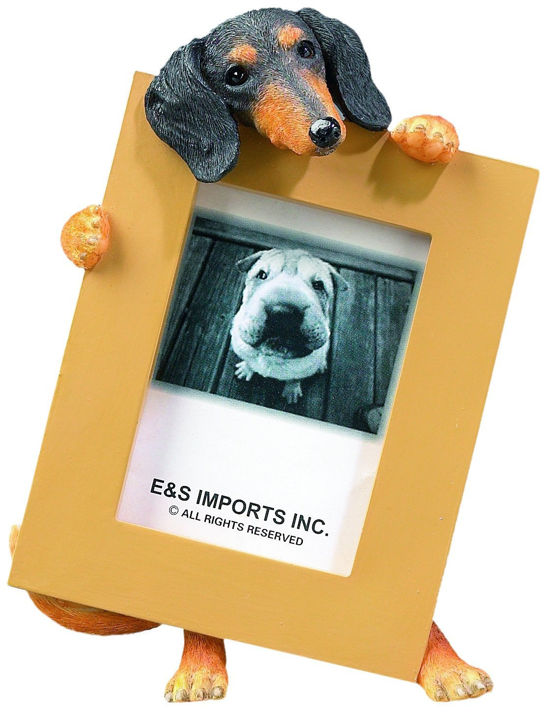 Dachshund Black Dog Picture Frame Holder