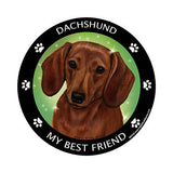 Red Dachshund My Best Friend Dog Breed Magnet