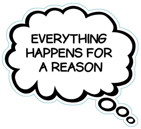Everything Happens For A Reason Brain Fart Car Magnet