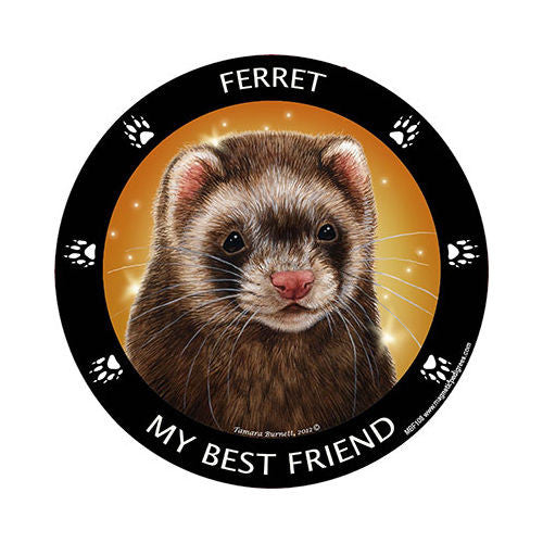 Ferret My Best Friend Breed Magnet