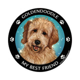 Goldendoodle My Best Friend Dog Breed Magnet