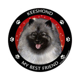 Keeshond My Best Friend Dog Breed Magnet