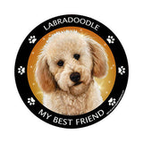 Labradoodle Yellow My Best Friend Dog Breed Magnet