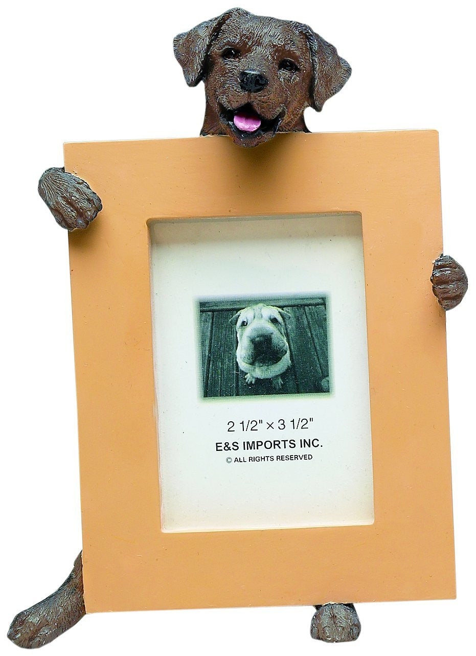 Labrador Chocolate Dog Holding Picture Frame