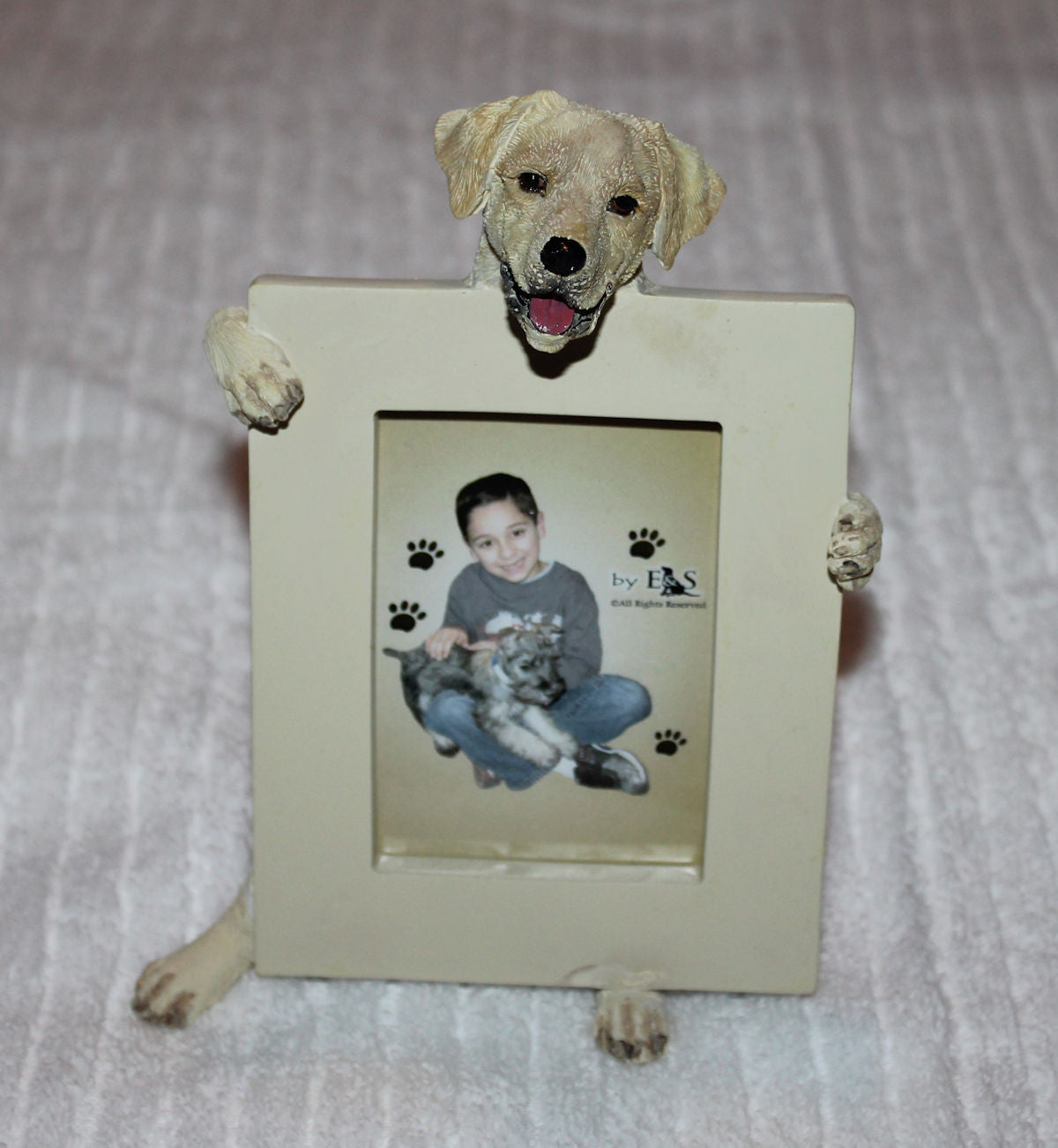 Yellow Labrador Dog Holding Picture Frame