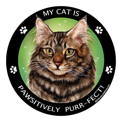 Maine Coon Brown Tabby Cat My Best Friend Dog Breed Magnet