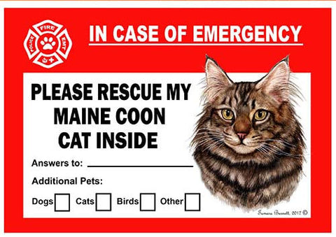 Maine Coon Brown Cat Emergency Window Cling