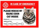 Maine Coon Silver Cat Emergency Window Cling