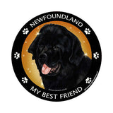 Newfoundland Newfie My Best Friend Dog Breed Magnet