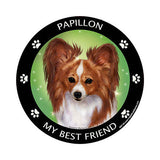Papillon Red My Best Friend Dog Breed Magnet