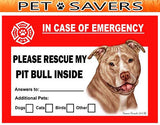 Pit Bull Emergency Window Cling