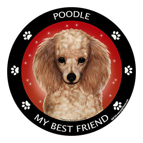 Poodle Apricot My Best Friend Dog Breed Magnet