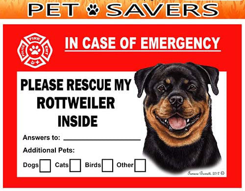 Rottweiler Dog Emergency Window Cling