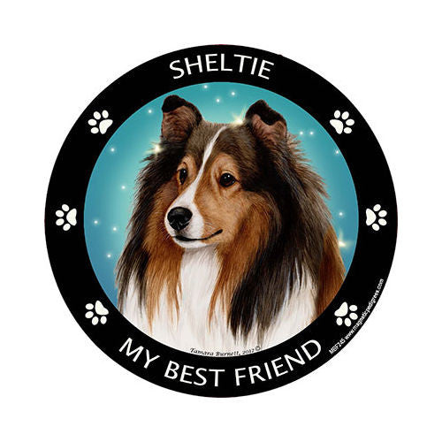 Sheltie My Best Friend Dog Breed Magnet
