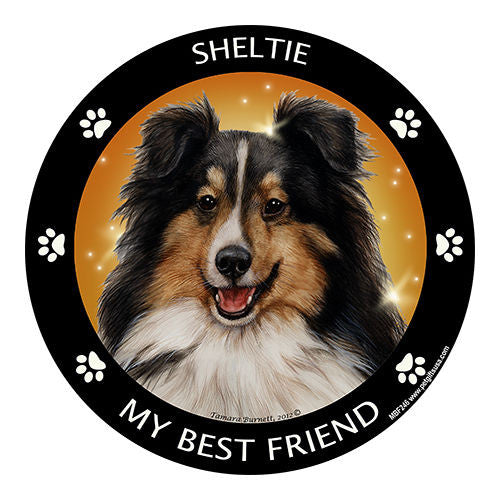 Sheltie Tri Color My Best Friend Dog Breed Magnet