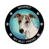 Whippet My Best Friend Dog Breed Magnet