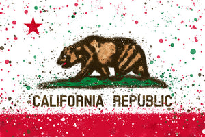 California Splatter Flag Magnet