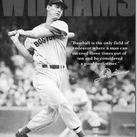 Ted Williams - Baseball Quote Tin Sign