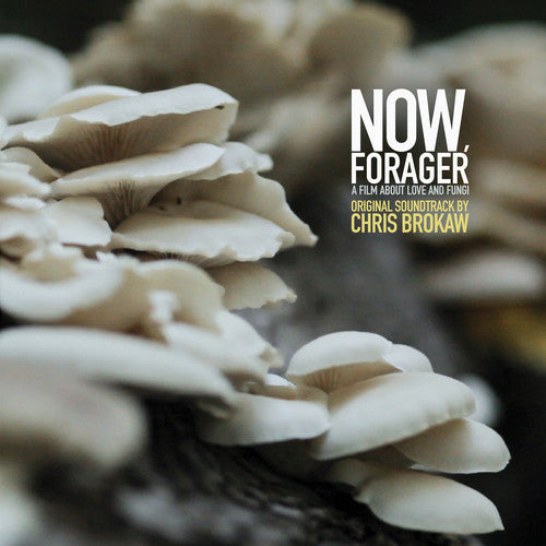 Now Forager (Original Soundtrack)