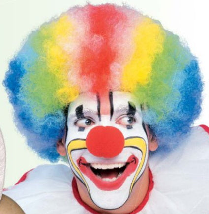 clown wig multi colour