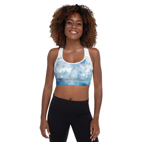 Blue Breeze Sports Bra