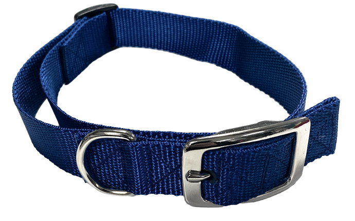 Medium Flat Buckle Dog Collar (Adjustable) - McCann Professional Dog Trainers