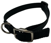 Load image into Gallery viewer, Medium Flat Buckle Dog Collar (Adjustable) - McCann Dog Trainers