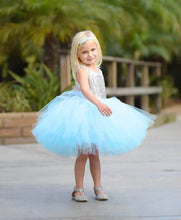 Load image into Gallery viewer, Tutu Dress For 1 Year Old In Skyblue Color