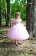 Load image into Gallery viewer, Cute Pink Tutu Dress