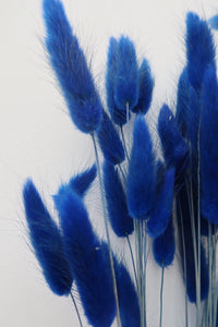 Blue Bunny Tails