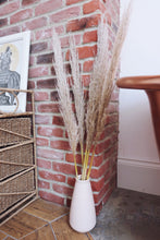 Load image into Gallery viewer, Dried Pampas Grass