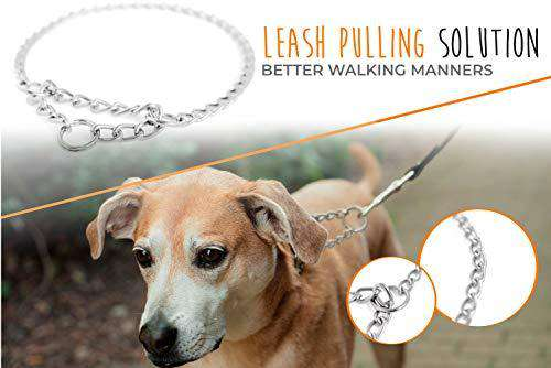 "Mighty Paw Stainless Steel Martingale Training Collar. Trainer Approved Modified Slip Chain Collar, No More Pulling. Perfect for Large & Small Dogs. (16"")"