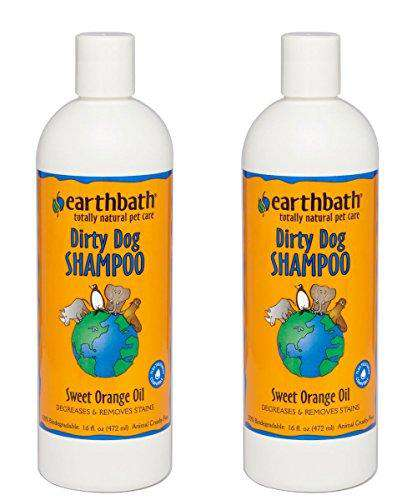 Earthbath All Natural Dirty Dog Gentle Shampoo Sweet Orange Oil, 16-ounce (2 Pack)