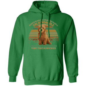 SILENCE IS GOLDEN LADIES Pullover Hoodie 8 oz.