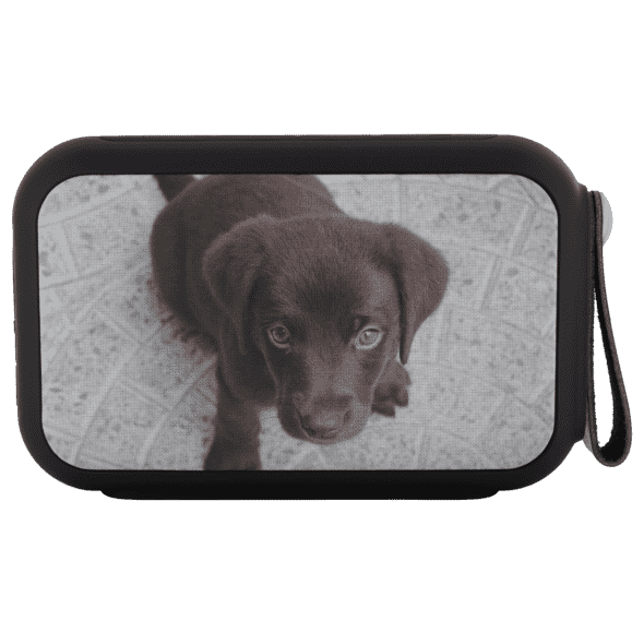 Personalized Pet 10-Watt Bluetooth Speaker