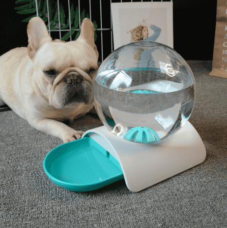Cat and Dog Water Bowl Dispenser