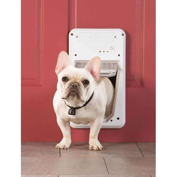 Collar Activated Door For Small Dogs