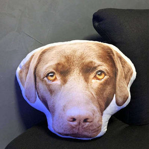 Pet Head Pillow