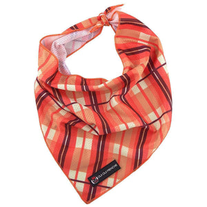 Dog Bandana - Fall Plaid Style