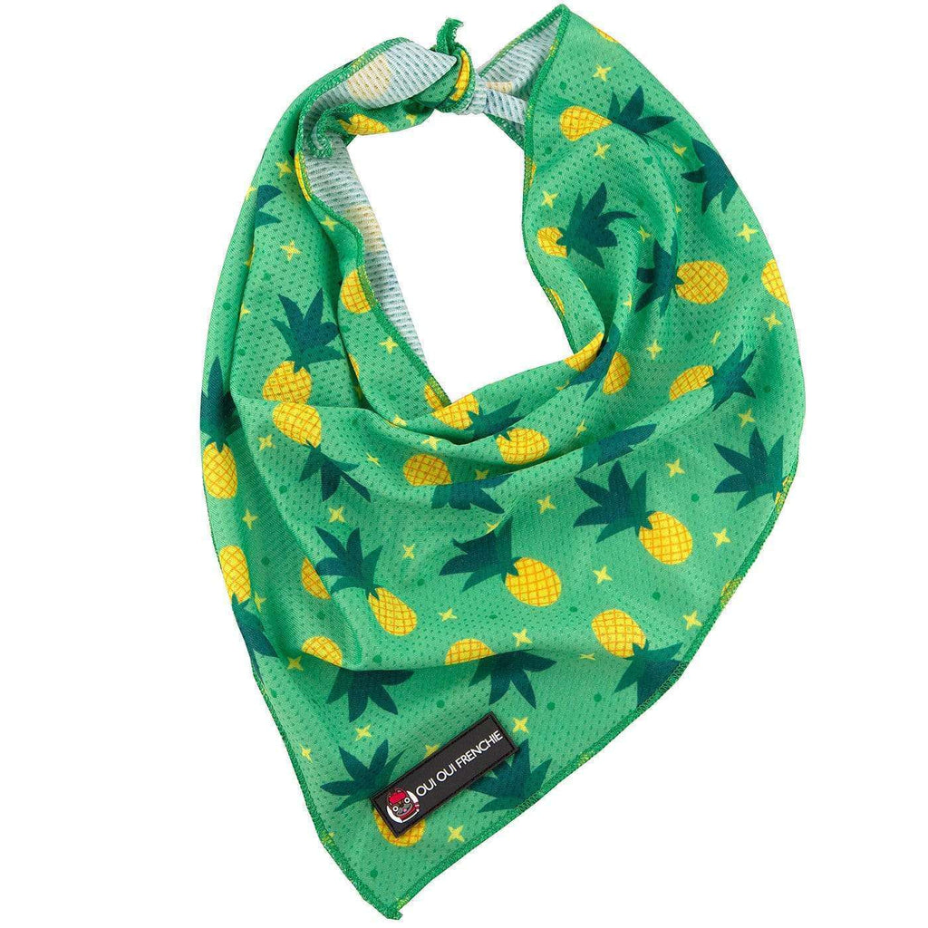 Dog Bandana - Pineapples Style