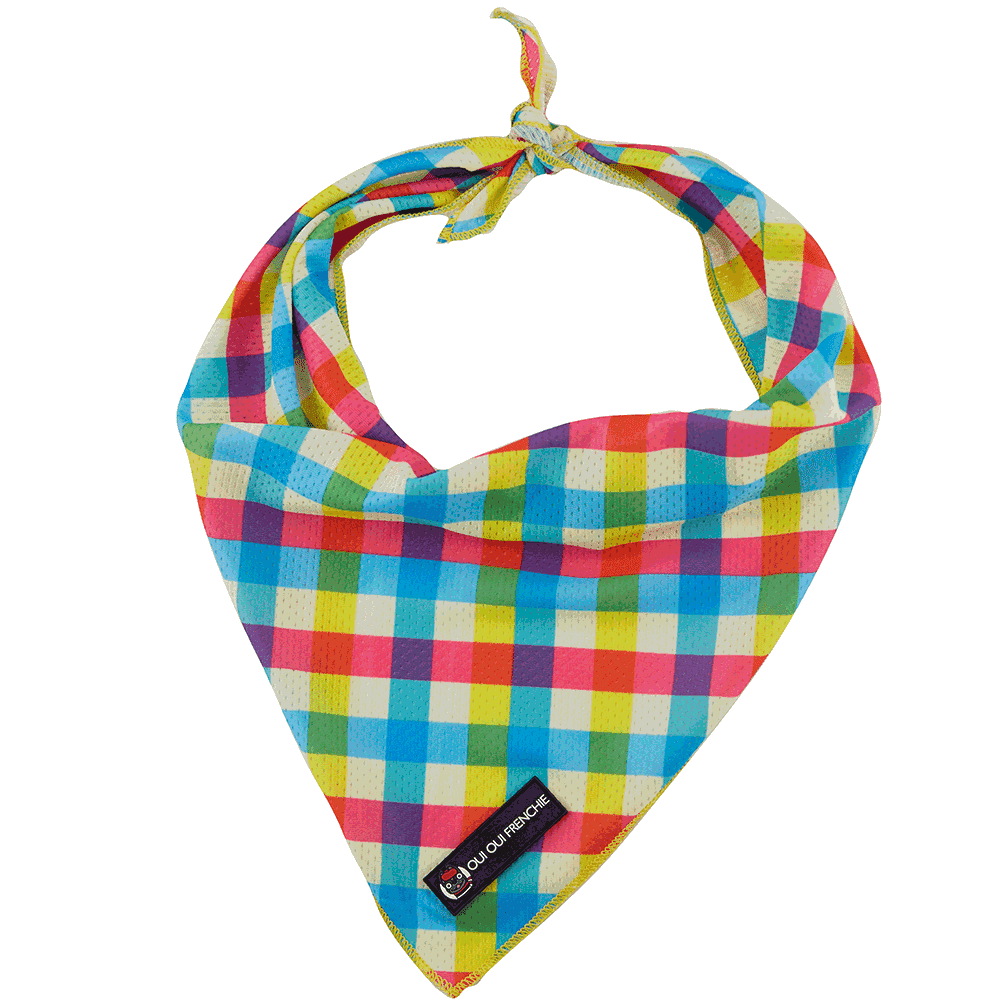 Dog Bandana - Plaid Style