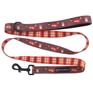 Dog Leash - Fall Style