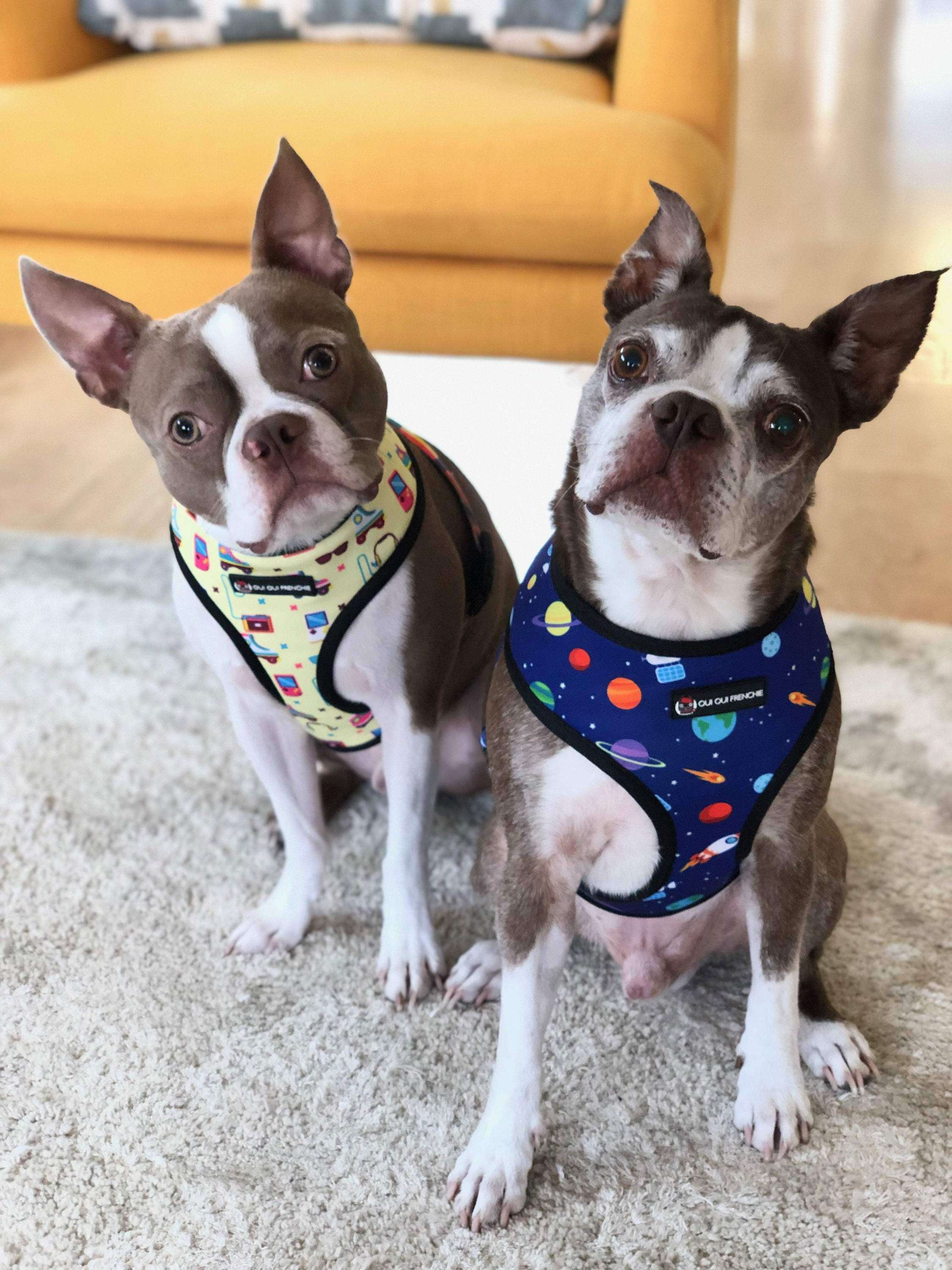 Dog Reversible Harness - Space Style